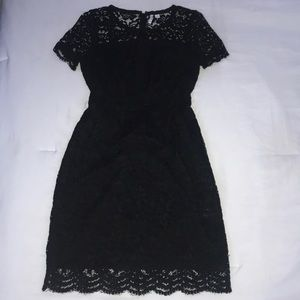 ELLE Short Sleeved Lace Knee Length Dress